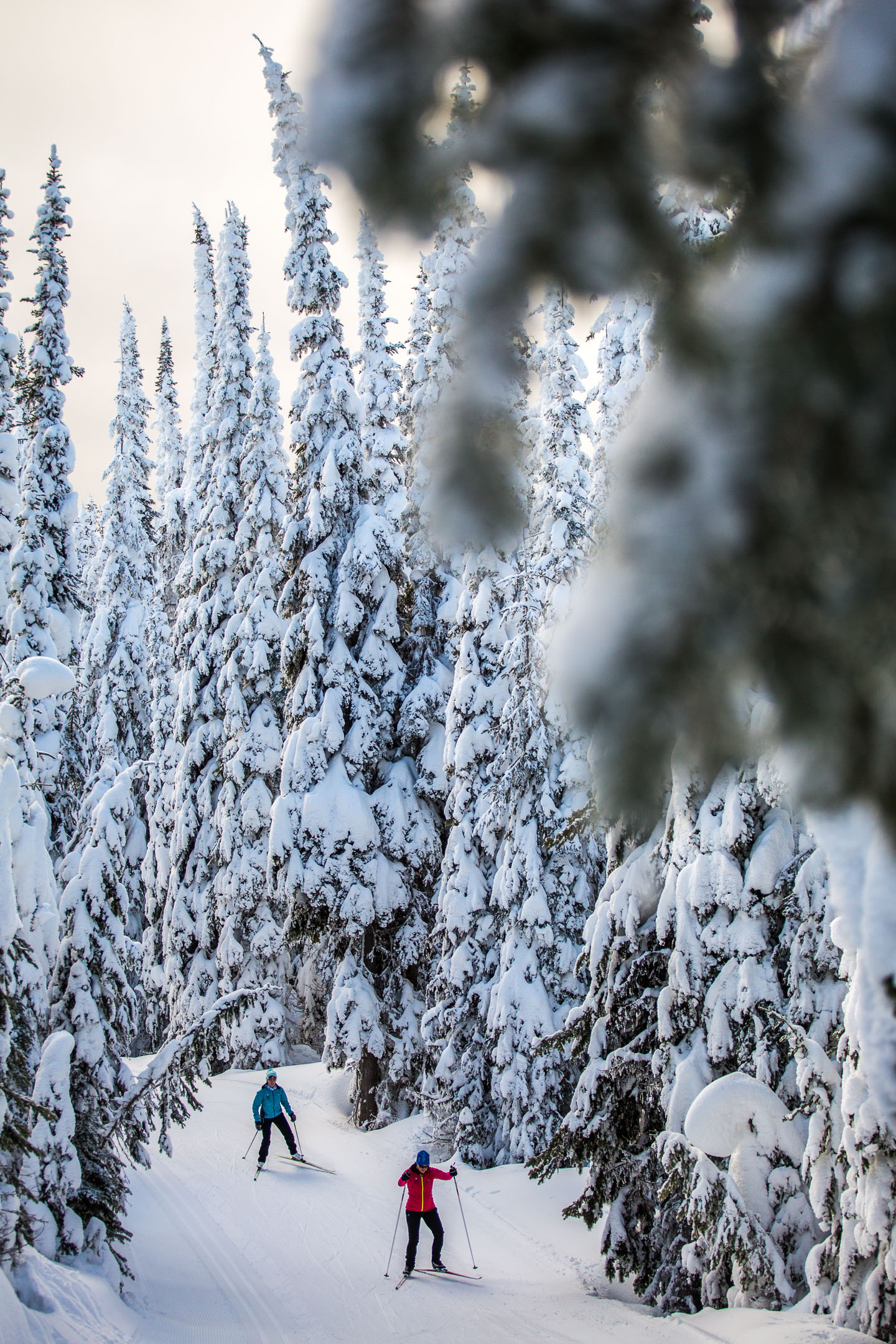 creary_march2019-37-website-sunpeaks
