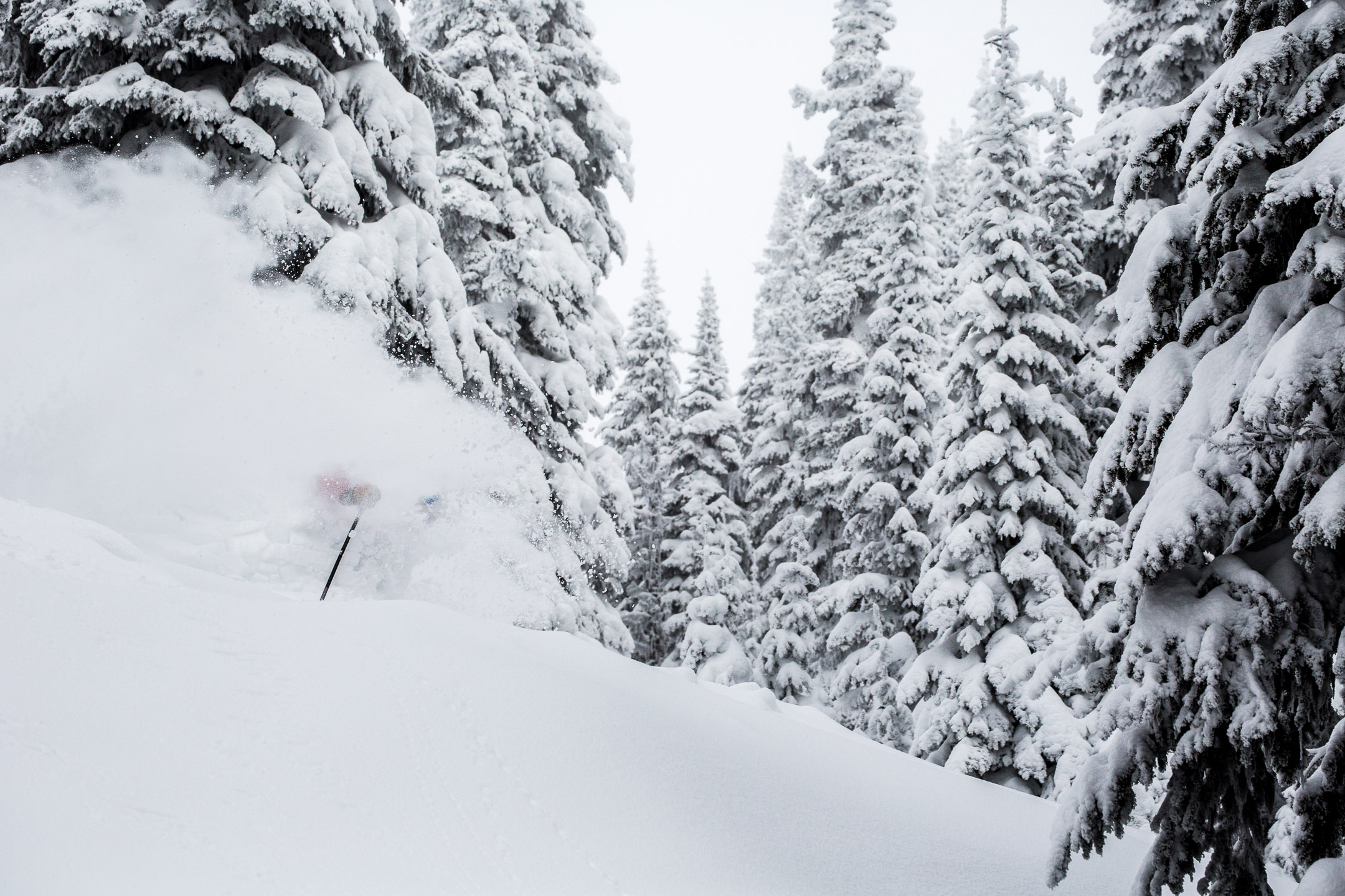 creary_march2019-8-website-sunpeaks