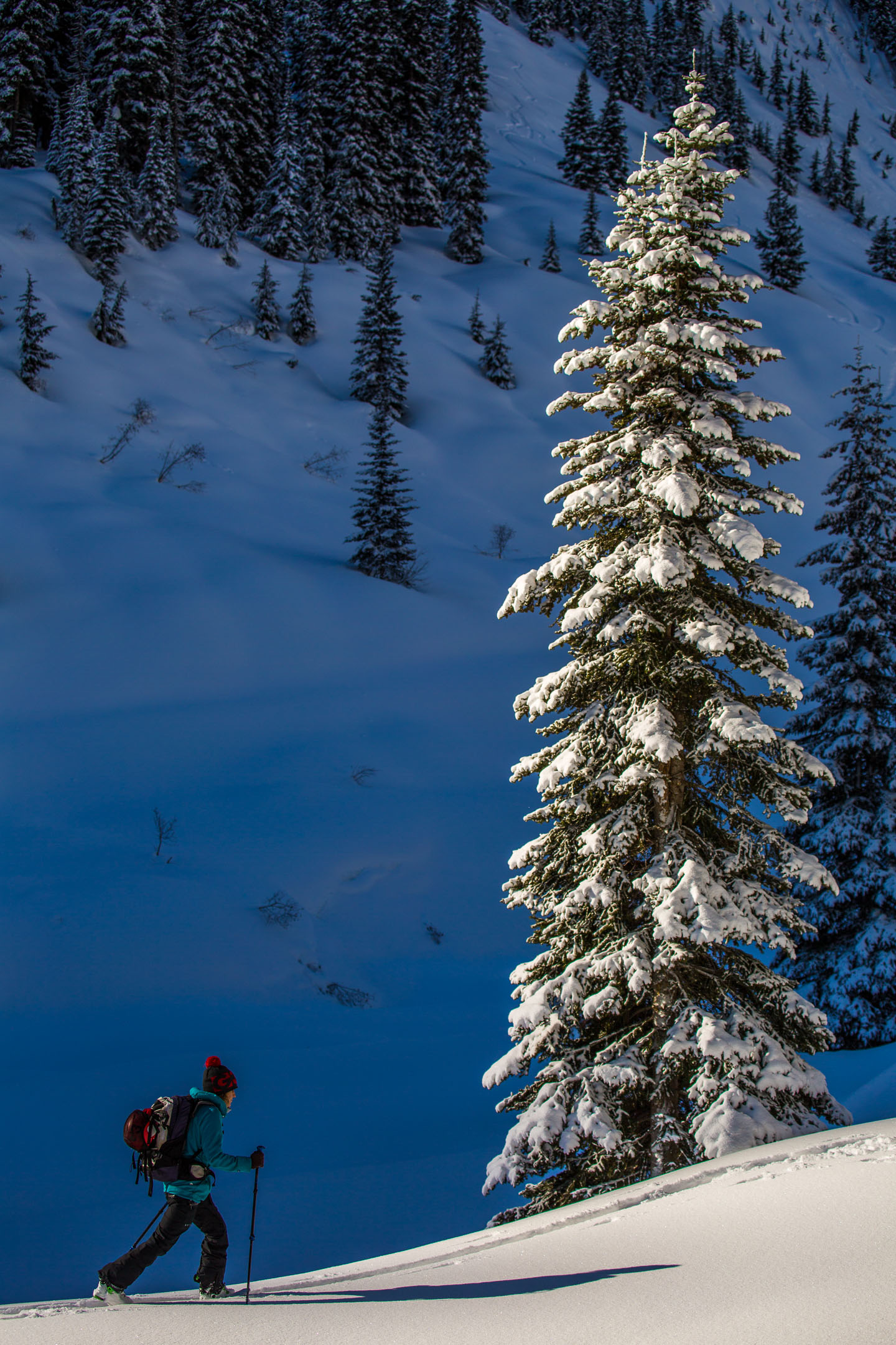 creary_ryan_rogers-pass_feb2019-4